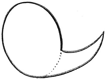 Aprenda O Passo A Passo Para Desenhar O Pica Pau Riclan